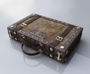 brief case 1