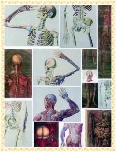 steampunk body-framed-