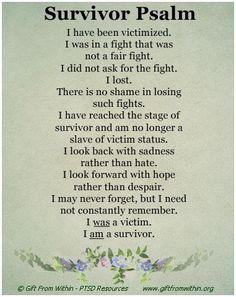 survivor 31