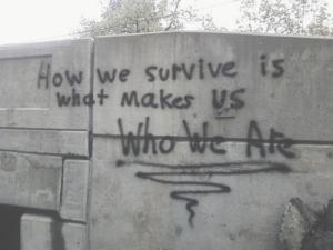 survivor 47