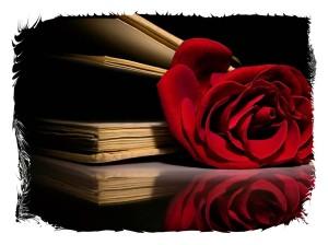 rose 11 framed