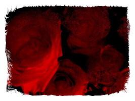 rose 12-framed