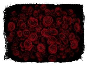 rose 13-framed