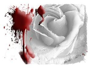 rose 36-framed