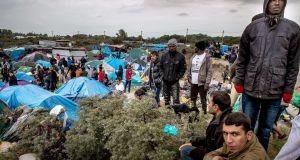 green park migrants
