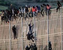 migrants fense