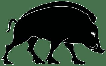 generation-identitaire[ roman boar